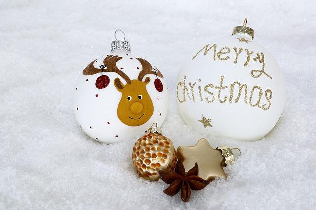 Abonéobio vous souhaite un Joyeux Noël 2010