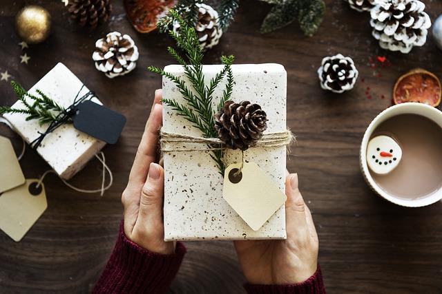 Idées pour un cadeau bio à Noël