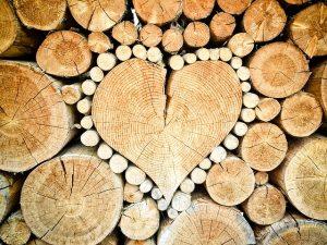 Le bois : matière première, énergie biomasse ou écrin à protéger ?