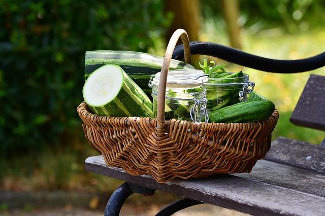 10 raisons de consommer bio sans dépenser plus