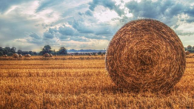 Soutenons les agriculteurs bio !