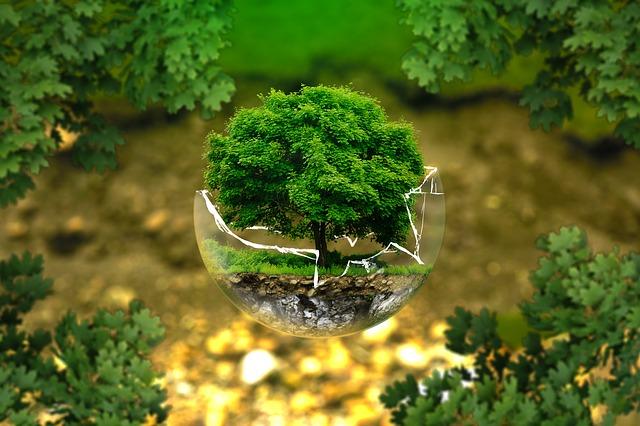 Earth Overshoot Day ou le jour du dépassement, et après, on fait quoi?