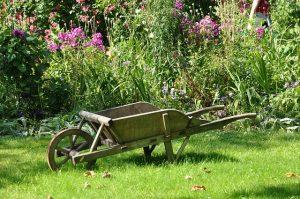 Entretenir son jardin de manière naturelle