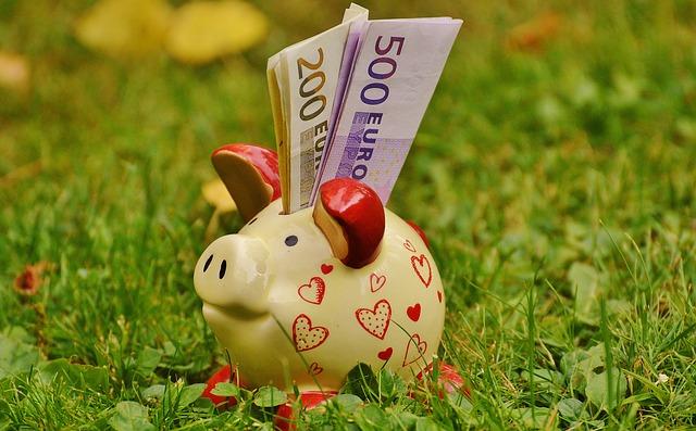 Epargne. Comment gagner de l'argent en étant écolo ?