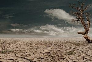 Sécheresse dans le désert