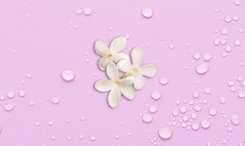 eau végétale